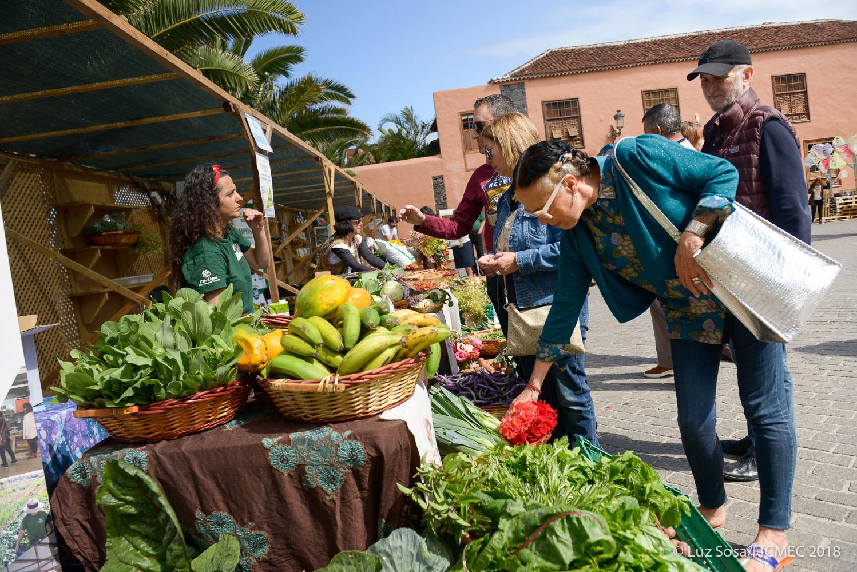 El Cabildo pone en valor la agricultura ecológica en la Feria Natura Salud, que tendrá lugar hasta el domingo